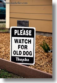 california, dogs, emotions, for, humor, mendocino, old, signs, vertical, watches, west coast, western usa, photograph