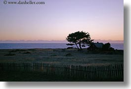 california, dusk, horizontal, houses, mendocino, silhouettes, trees, west coast, western usa, photograph