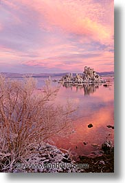 california, lakes, mono, mono lake, vertical, west coast, western usa, photograph