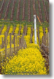 california, napa, vertical, vineyards, west coast, western usa, windmills, photograph