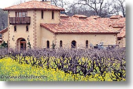 california, horizontal, napa, west coast, western usa, wineries, photograph