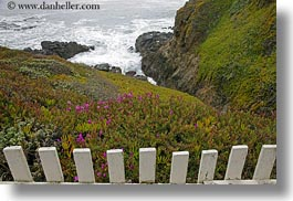 california, fences, horizontal, ice plants, ocean, picket fence, pigeon point lighthouse, structures, west coast, western usa, photograph