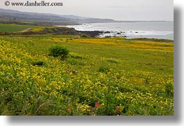 california, green, horizontal, landscapes, pigeon point lighthouse, west coast, western usa, photograph