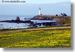 california, greenery, horizontal, lighthouses, pigeon point lighthouse, west coast, western usa, photograph