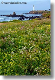 california, greenery, lighthouses, pigeon point lighthouse, vertical, west coast, western usa, photograph