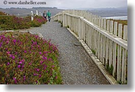 california, fences, horizontal, paths, people, picket, picket fence, pigeon point lighthouse, structures, west coast, western usa, photograph