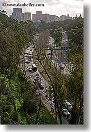 california, cityscapes, highways, san diego, traffic, trees, vertical, west coast, western usa, photograph