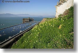 alcatraz, buildings, california, flowers, horizontal, marin, san francisco, views, west coast, western usa, photograph