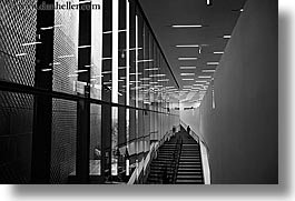 black and white, buildings, california, de young, de young museum, golden gate park, horizontal, museums, san francisco, stairs, west coast, western usa, photograph