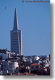 buildings, california, san francisco, trans, vertical, west coast, western usa, photograph