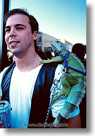 california, folsom fair, homosexual, iguanas, men, san francisco, vertical, west coast, western usa, photograph