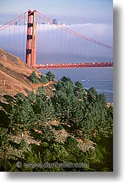 bridge, california, golden gate, golden gate bridge, national landmarks, san francisco, vertical, west coast, western usa, photograph