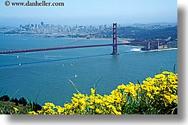 bridge, california, flowers, golden gate, golden gate bridge, horizontal, national landmarks, san francisco, west coast, western usa, photograph