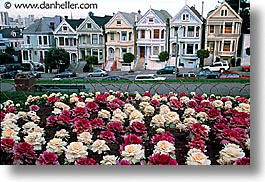 california, homes, horizontal, san francisco, sisters, victorians, west coast, western usa, photograph