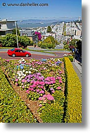 california, lombard, lombard street, san francisco, streets, vertical, west coast, western usa, photograph