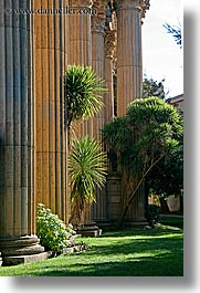 california, palace fine art, palace of fine art, pillars, san francisco, trees, vertical, west coast, western usa, photograph