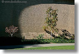 california, horizontal, palace fine art, palace of fine art, san francisco, trees, west coast, western usa, photograph