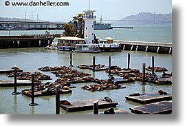 california, forbes, horizontal, islands, lions, piers, san francisco, seas, west coast, western usa, photograph