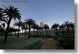 buildings, california, clocks, horizontal, palm trees, ports, san francisco, towers, trees, west coast, western usa, photograph