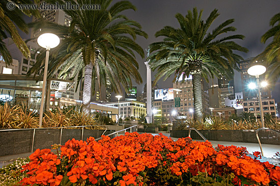 Flowers and palm trees for Western union san francisco ca