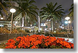 california, cityscapes, flowers, horizontal, lamp posts, long exposure, nite, palm trees, san francisco, union square, west coast, western usa, photograph