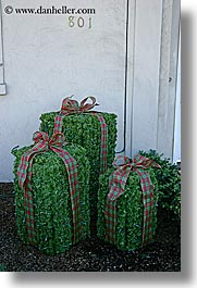 bushes, california, christmas, presents, san francisco, vertical, west coast, western usa, photograph