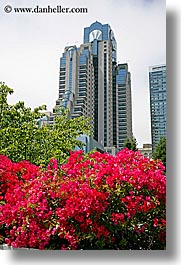 california, flowers, hotels, marriott, san francisco, vertical, west coast, western usa, yerba buena, photograph