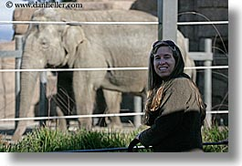 california, elephants, horizontal, jills, santa barbara, west coast, western usa, zoo, photograph