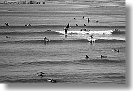 activities, black and white, california, coastline, horizontal, nature, ocean, people, santa cruz, surfers, surfing, swim, water, waves, west coast, western usa, photograph