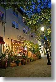 buildings, california, chocolate, garden mall, lamp posts, long exposure, nature, nite, plants, santa cruz, stores, structures, trees, vertical, west coast, western usa, photograph