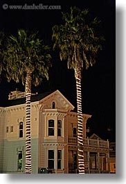 california, houses, lighted, nature, nite, palm trees, plants, santa cruz, trees, vertical, victorians, west coast, western usa, photograph