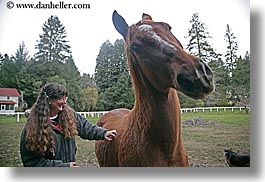 allie, california, emotions, happy, horizontal, horses, people, santa cruz, smiles, west coast, western usa, womens, photograph