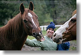 california, emotions, happy, horizontal, horses, humor, jills, laugh, people, santa cruz, smiles, west coast, western usa, womens, photograph