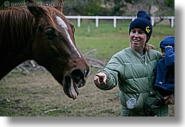 california, emotions, happy, horizontal, horses, humor, jills, people, santa cruz, smiles, tongues, west coast, western usa, womens, photograph