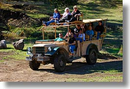 california, horizontal, people, safari west, sonoma, tourists, trucks, west coast, western usa, photograph