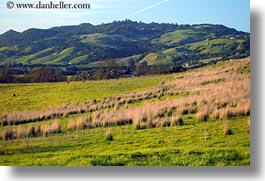 california, green, hills, horizontal, open, scenics, sonoma, space, west coast, western usa, photograph