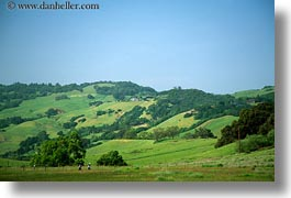 california, green, hikers, hills, horizontal, scenics, sonoma, west coast, western usa, photograph