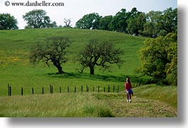 california, hiking, horizontal, paths, scenics, sonoma, west coast, western usa, photograph