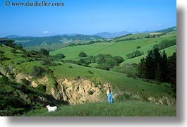 california, dogs, horizontal, jills, scenics, sonoma, viewing, west coast, western usa, photograph