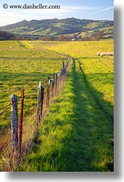 california, fences, fields, green, long, scenics, sonoma, vertical, west coast, western usa, photograph