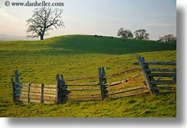 california, fences, fields, green, horizontal, long, scenics, sonoma, west coast, western usa, photograph