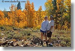 aspens, california, dans, fall foliage, horizontal, jills, trees, virginia lakes, west coast, western usa, photograph