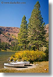 boats, california, fishing, lakes, trees, vertical, virginia lakes, west coast, western usa, photograph