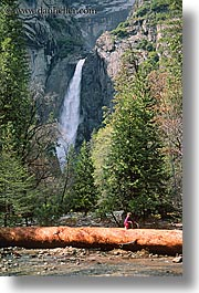california, falls, logs, nature, trees, vertical, water, waterfalls, west coast, western usa, yosemite, yosemite falls, photograph