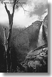 black and white, california, falls, nature, trees, vertical, water, waterfalls, west coast, western usa, yosemite, yosemite falls, photograph