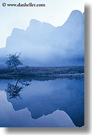 california, fog, foggy, mountains, nature, reflect, reflections, trees, vertical, water, west coast, western usa, yosemite, photograph
