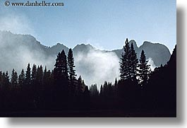 california, fog, horizontal, mountains, nature, silhouettes, trees, west coast, western usa, yosemite, photograph