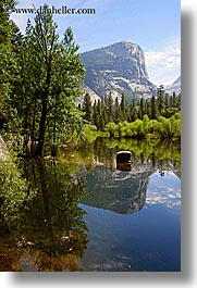 california, lakes, mirror lake, mountains, nature, plants, reflections, trees, vertical, water, west coast, western usa, yosemite, photograph