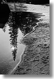 black and white, california, lakes, materials, mirror lake, nature, plants, reflections, rivers, sand, trees, vertical, water, west coast, western usa, yosemite, photograph