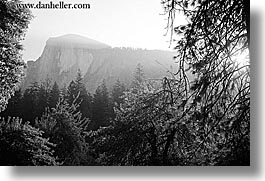 black and white, california, half dome, horizontal, morning, mountains, nature, sky, sun, trees, west coast, western usa, yosemite, photograph
